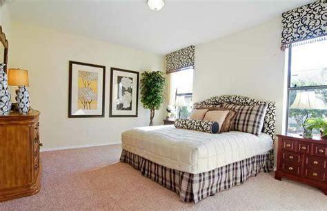 zimmerpflanze schlafzimmer passende zimmerpflanzen bestimmen und pflegen frisch mobel