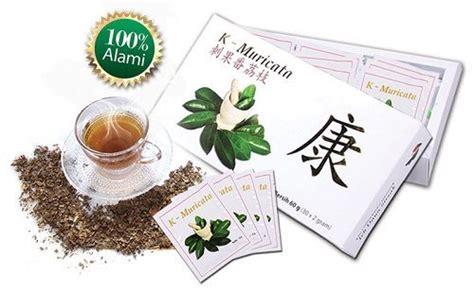 Obat Herbal K Muricata obat herbal asam urat alami dan berkhasiat