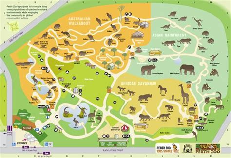 zoo map perth zoo australia maps family destinations penguins and the o jays