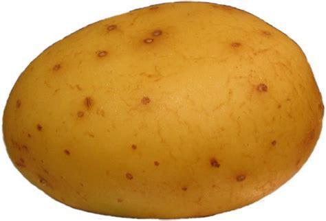 A Potato by Potato Your Meme