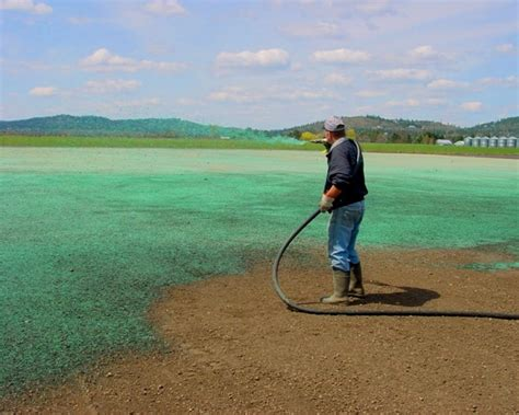 hydroseeding is cost effective for large areas