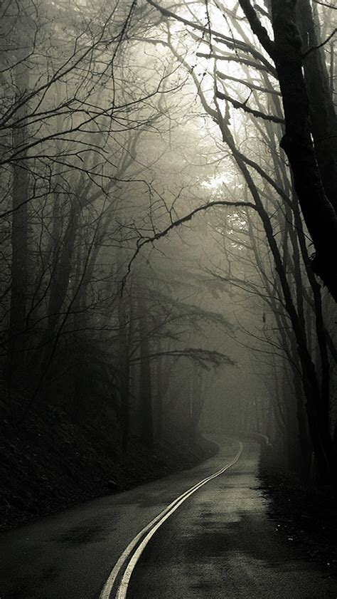 dark road forest  iphone wallpapers