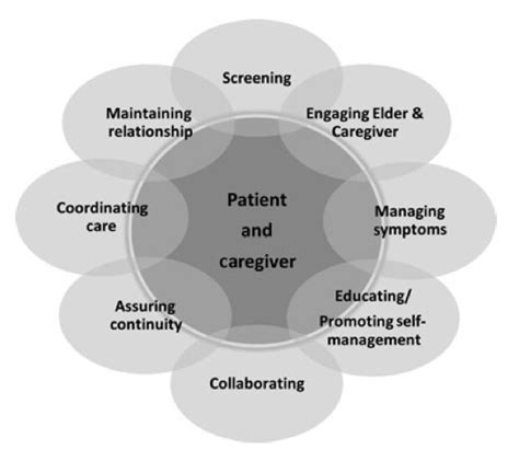 emerging roles in nursing care and accountability