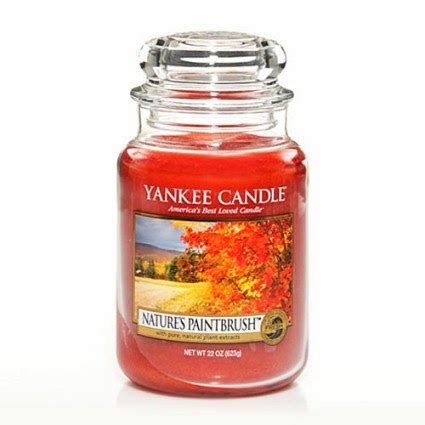 Yankee Candle Retired Scents 2014 by Andy S Yankees Nature S Paintbrush Yankee Candle Feature