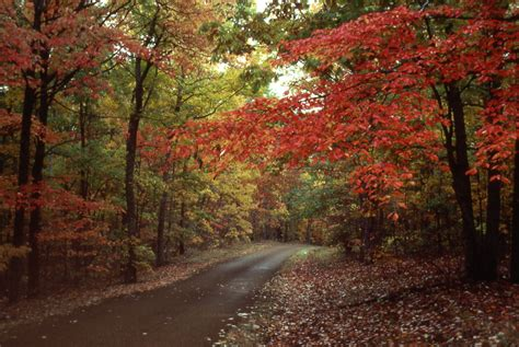 fall colors natchez trace parkway  national park