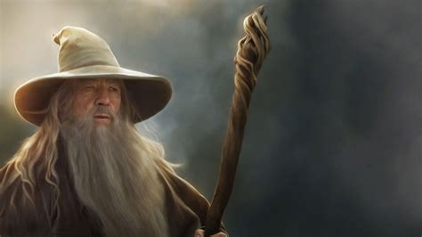 Lord Of The Ring Gandalf the character of gandalf was played in the the lord