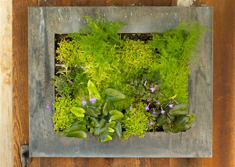 Vertical Garden Frames Great Garden Stores For Gardeners Gardens