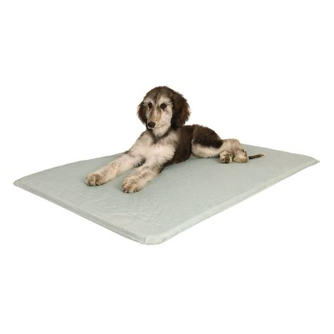cooling dog bed k h pet products cool bed iii medium gray cooling dog bed