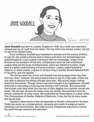 biography definition in science jane goodall biography worksheet education com