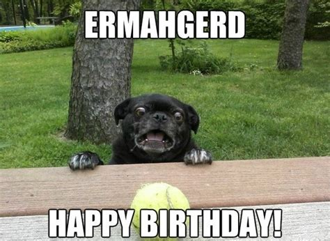 Ermahgerd Happy Birthday Meme - happy birthday memes images about birthday for everyone