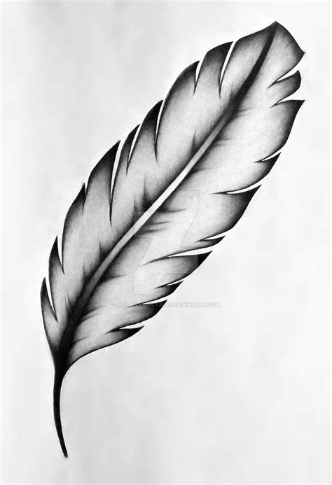 tattoo feather drawing feather tattoo design by nathanbrittain on deviantart