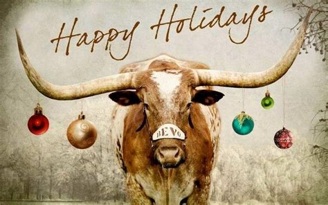 happy holidays  bevo texas  road trips
