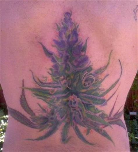 tattoo tribal weed tattoos pictures gallery tattoos idea tattoos images