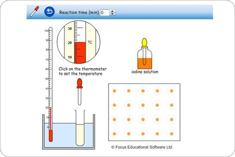 design an enzyme experiment breakdown of starch by amylase science experiment by focus
