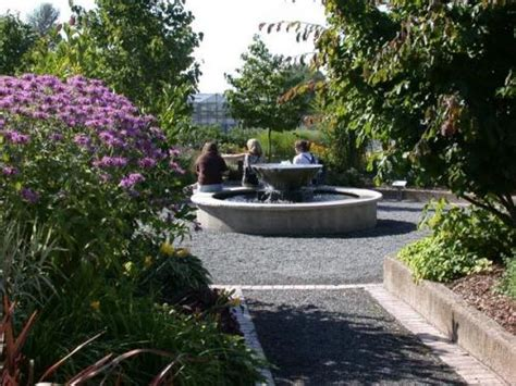 The Top 20 Most Beautiful College Gardens And Arboretums Washington Botanical Gardens