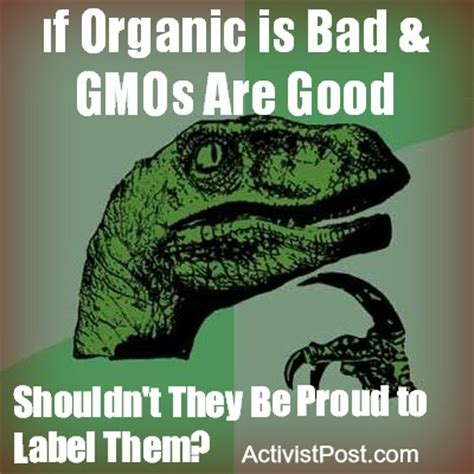 are gmos bad for your health if you re asking this question you re probably missing the point kc phil yglesias the gmo debate is gm crops must be immediately outlawed monsanto
