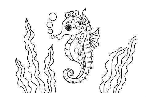 gambar mewarnai kuda rumput laut untuk anak anak contoh anak paud