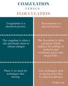 what is the difference between a and a sofa difference between coagulation and flocculation