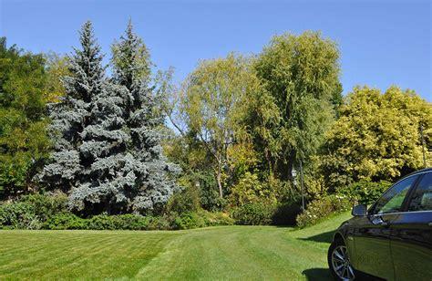 i giardini bergamo realizzazione giardini bergamo 3g giardini