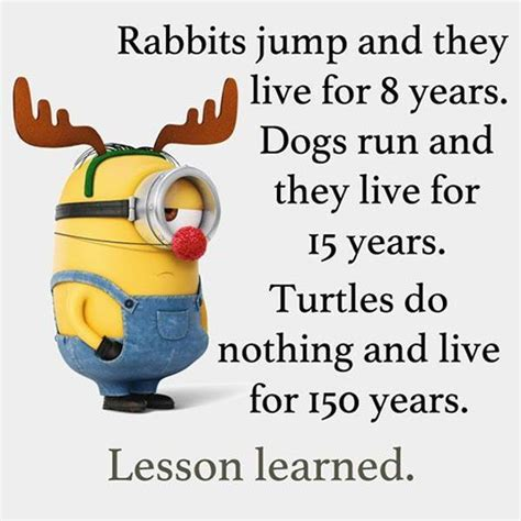 cool funny quotes 350 amusing sayings and quotations cool funny quotes quot do nothing live 150 years quot funny
