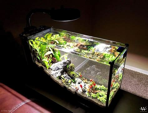 Fluval Spec V Aquascape by 17 Best Images About Aquascaping Aquarium On