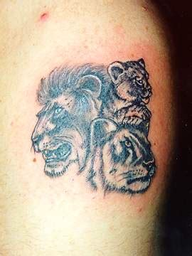 Small Tiger Tattoo Tattoo Designs Tattoo Pictures Small Tiger Tattoos For