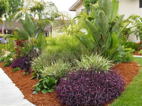 Garden Landscaping Ideas purple heart at the beach creek apartments in san diego