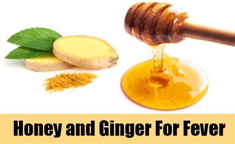 what to give a for fever best home remedies for fever