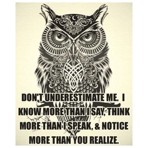 owl symbolism pure spirit acerca de clever cat and wise owl