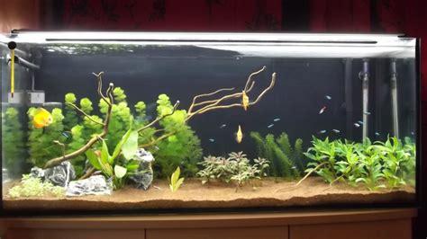 Aquarium 100 L 2023 by Nos Bacs