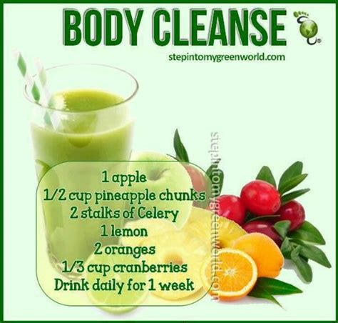 Smoothie Detox Plan by Cleanse Smoothie A Healthy Alternative