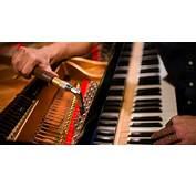 Gresham  Sterling Piano Tuning