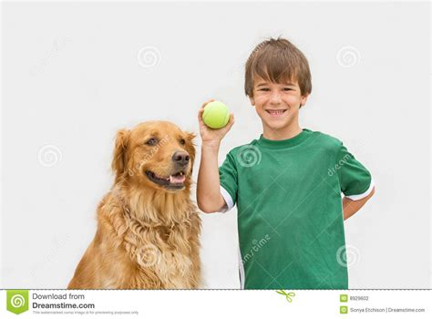 Rabbit Hutch Prices Boy Playing Catch With Dog Stock Photography Image 8929602