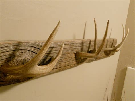Deer Antler Coat Rack by Whitetail Deer Coat Or Towel Rack
