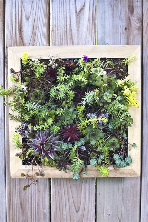 diy vertical succulent garden diy in pdx