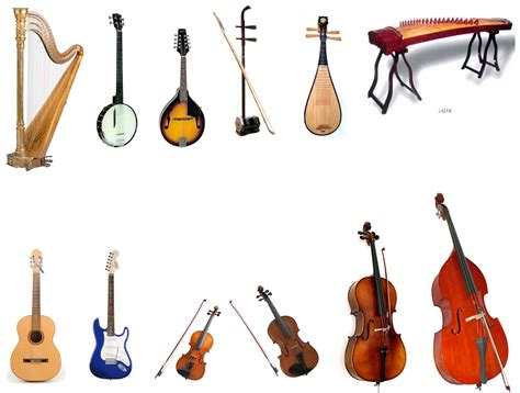 the encyclopedia of instruments of the orchestra and the great composers books image gallery names of string instruments