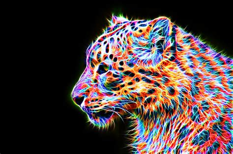 Colorful Leopard Viii By Megaossa On Deviantart Colourful Images
