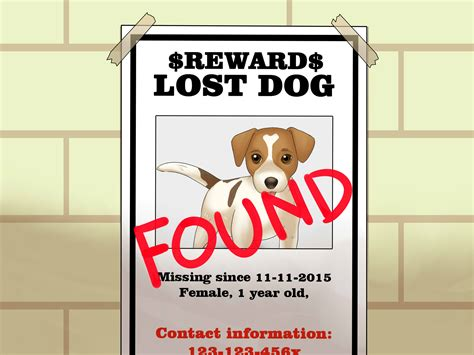 design a poster on your missing pet how to make an effective missing pet poster with pictures
