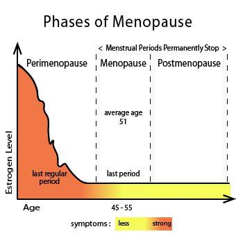1000 ideas about menopause signs image gallery menopause age