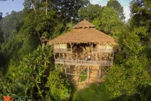 treehouse cottages in top 20 lettings chiang dao district