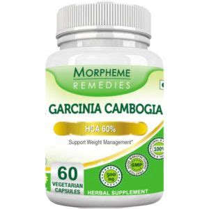 best garcinia cambogia brands top garcinia cambogia brands in india best garcinia