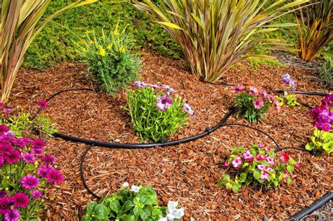 protect  plants   drip irrigation kit garden club