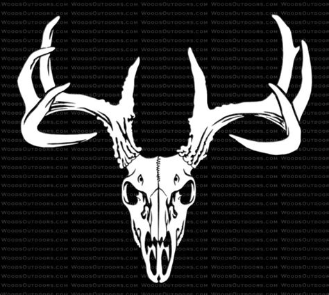 Mossy Oak Home Decor by Whitetail Buck Skull Typical Rack Deer Hunting Window