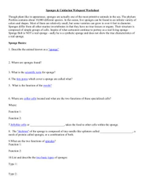 section 26 2 sponges worksheet answers studylib net essys homework help flashcards research