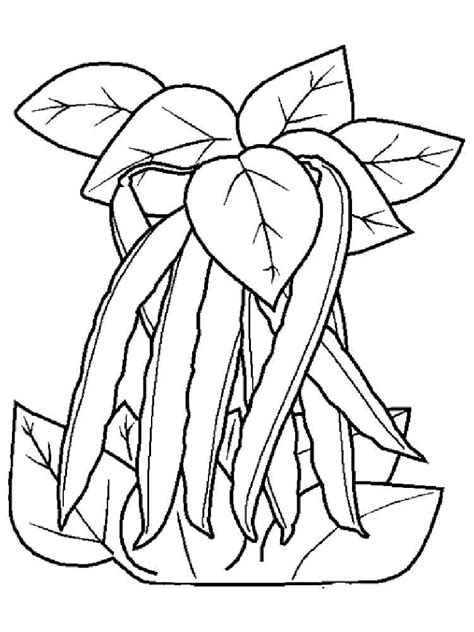 Beans Coloring Pages Download And Print Beans Coloring Pages Beans Coloring Pages