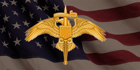 marsoc s new badge should be replaced with one of these 5