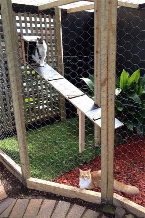 outdoor run outdoor cat run diy crafts