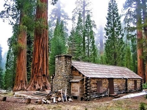 Cabin In Yosemite by Mariposa Grove Pixdaus