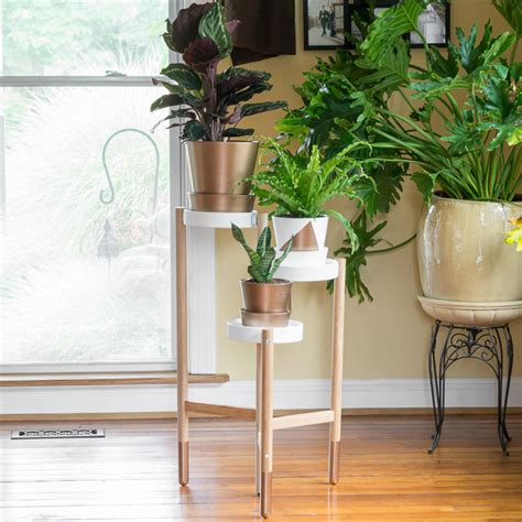 satsumas plant stand ikea one room challenge week 4 greenery painted gold accents