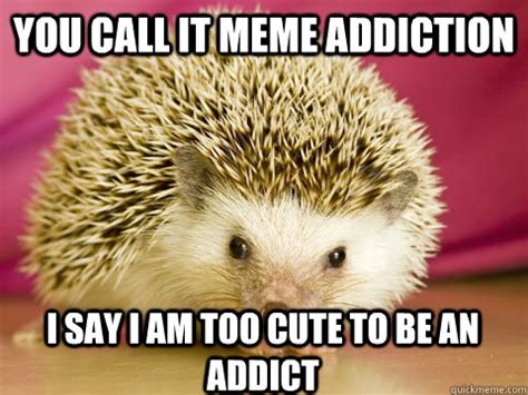 Intervention Meme - intervention porcupine memes quickmeme
